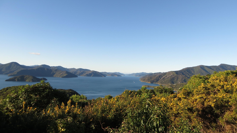 Ausblick auf den Queen Charlotte Sound