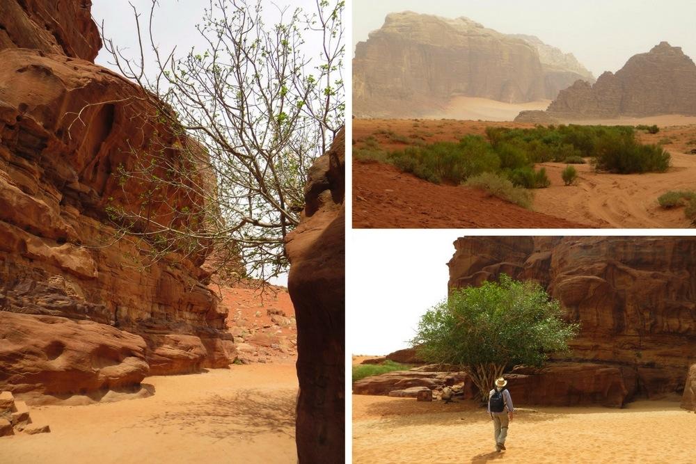 Wadi Rum Jordanien Farbenspiel