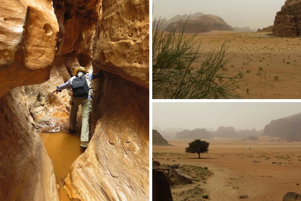 Impressionen aus Wadi Rum Jordanien