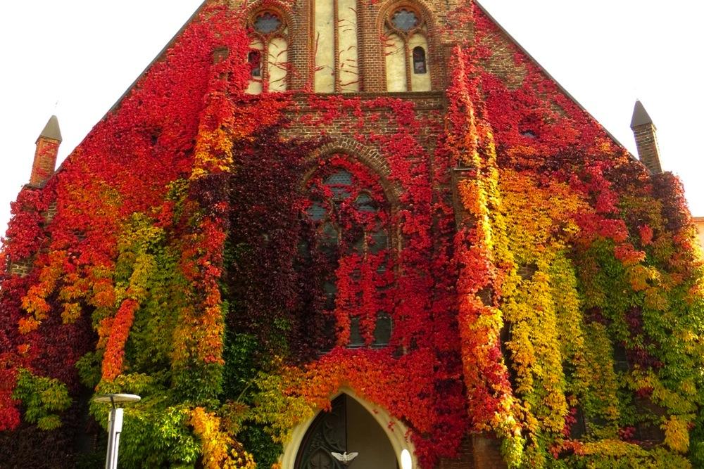 Heilgeist Kirche Stralsund
