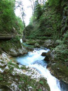 Vintgar Klamm Slowenien