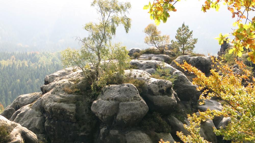 Sächsische Schweiz Highlight Kuhstall