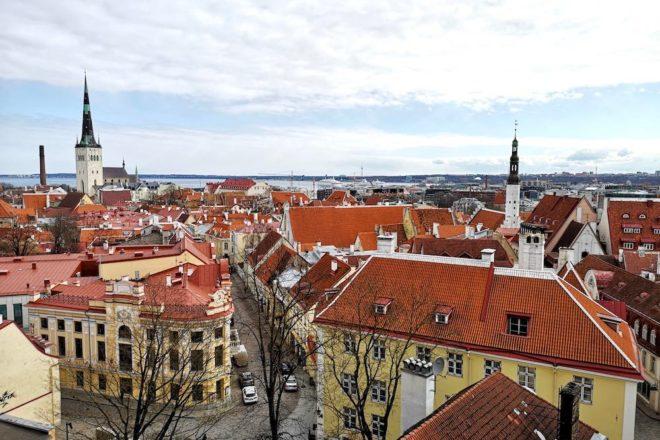 Was du in Tallinn anschauen kannst